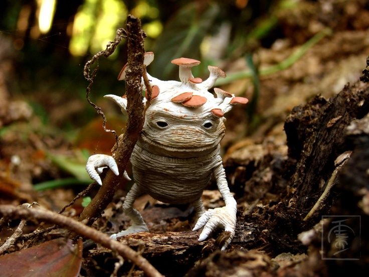Magical Forest Creatures Forest Creature Mycology Is