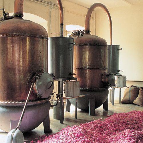 Techniques de Parfumerie : La technique de la distillation