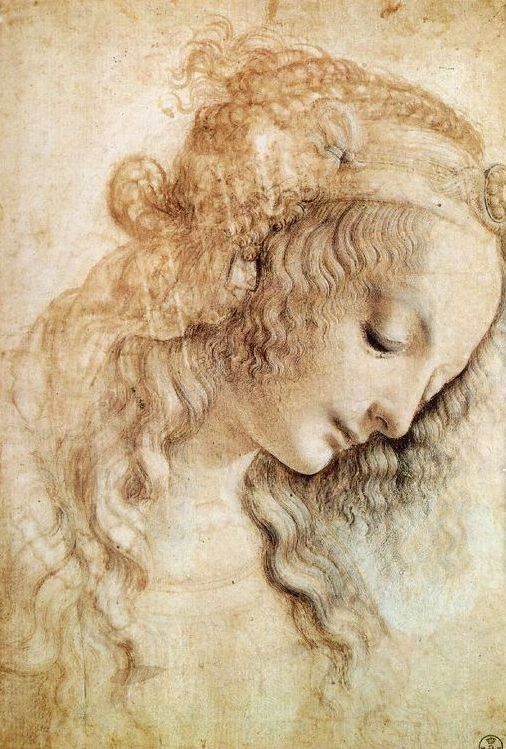 leonardo da vinci paintings i like how the flours tell