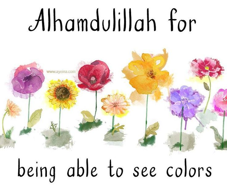 12. Alhamdulillah for being able to see colors #AlhamdulillahForSeries
