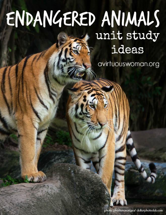 Endangered Animals Unit Study Ideas {Homeschool Freebies} @ AVirtuousWoman.org