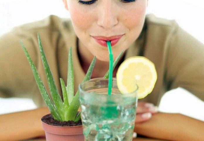 Okrem toho, že je to zdravým zvykom amoderným trendom, pitie zdravých nápojov slúži ako špecifický symbol statusu vsúčasnej spoločnosti. Jeden jednoducho nemôže brať ako samozrejmosť to, že existujú početné dôvody, prečo dnes ľudia po celom svete konzumujú zdravé nápoje. Hlavným dôvodom je samozrejme to, že sú vysoko oceňované aodporúčané najmä zlekárskeho hľadiska. Vmedicínskom smere slúžia