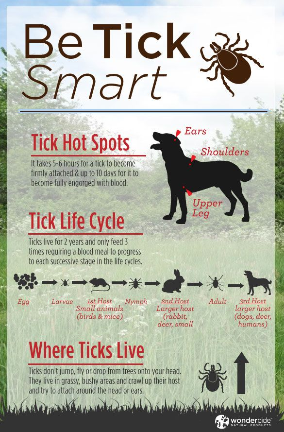 Be Smart about Ticks! #dogs #ticks #organic #pestcontrol