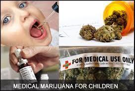 Jamaïque: Le ministre de la Justice plante le premier plant de cannabis destiné à un usage médical.