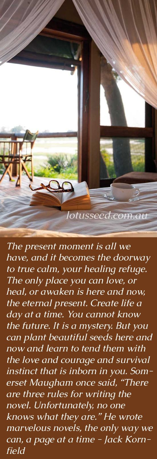 Jack Kornfield - Buddhist Zen quotes by lotusseed.com.au