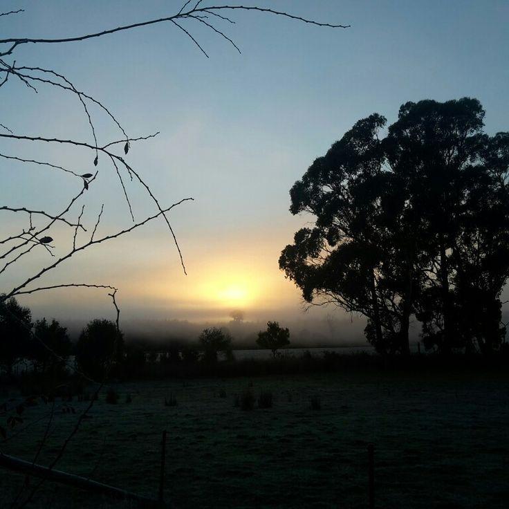 Dawn at Killiecrankie Farm