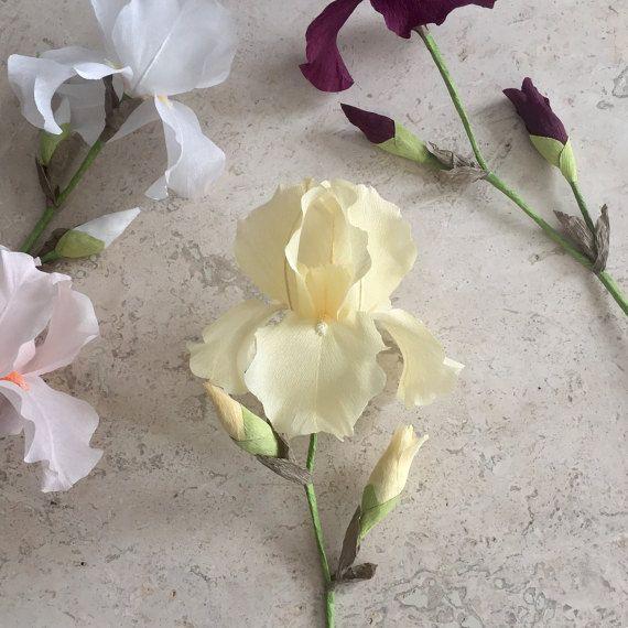 Papel Crepe barbudo Iris madre sola boda flores por NectarHollow