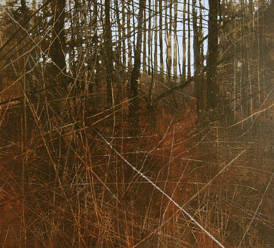 David Parfitt RI - Gallery.  interesting way to realistically fill the foreground without a looming shadow.