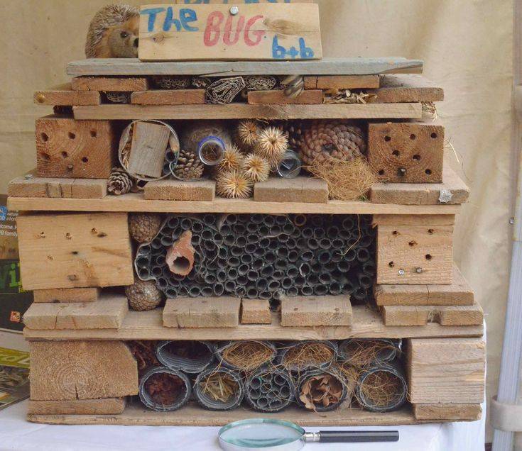 Nottingham in Bloom open day bug hotel
