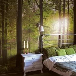 Autumn Forest fotobehang fotobehang kopen? Bestel bij Fonq.nl