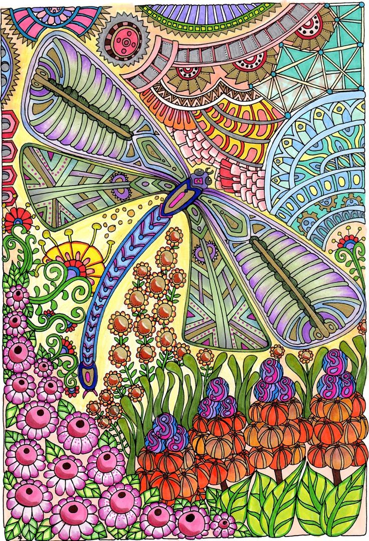 Coloring in dragonflies - Amazon Com Bellabella By The Sea S Review Of Creative