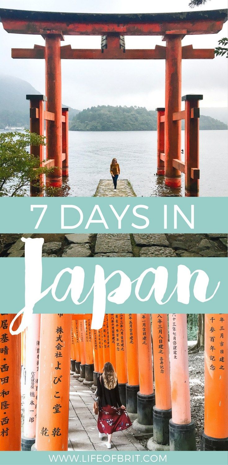 How to efficiently spend 7 days in Japan without missing out on the must see sights! At lifeofbrit.com