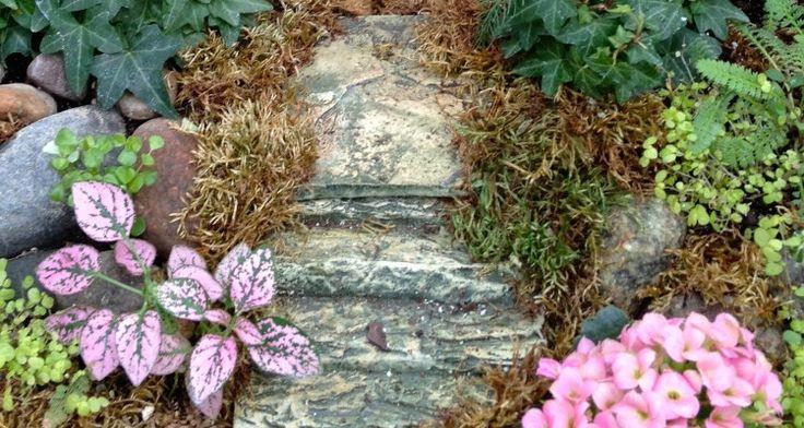 Best 15 Outdoor Fairy Garden Ideas
