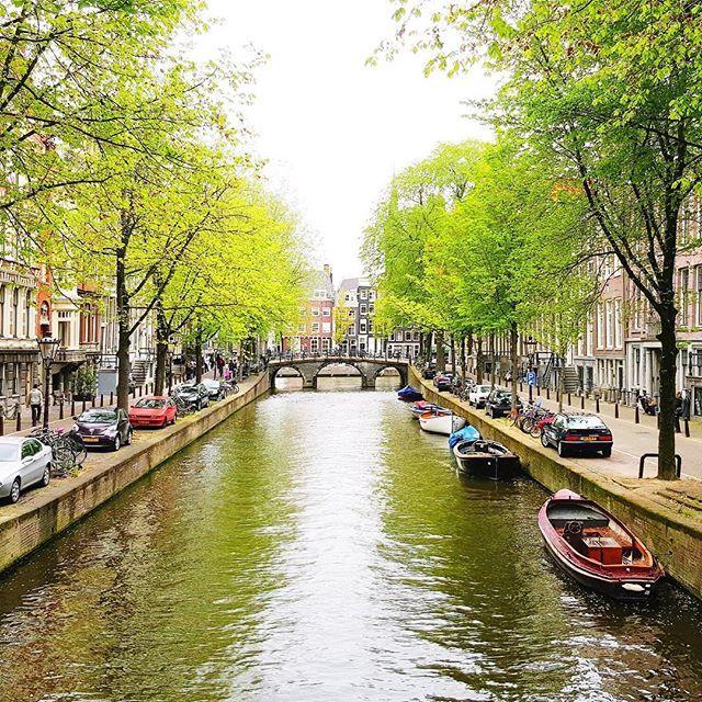 #amsterdam #netherlands #tree #river #travel #makemoments #liveauthentic #haisitu #bestofamsterdam  www.haisitu.ro