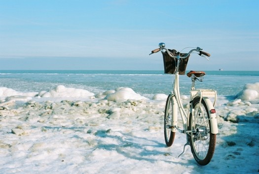 Beautiful bike next to the sea