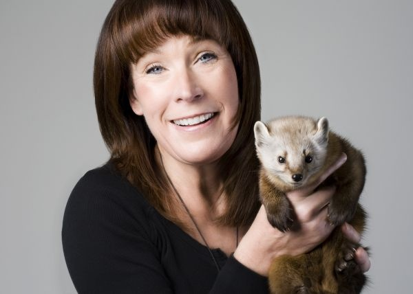 Hope Swinimer with a pine marten. Originally from Argyle, Swinimer is the founder of the Hope for Wildlife Society, located in Seaforth, just outside Dartmouth. She is one amazing woman!