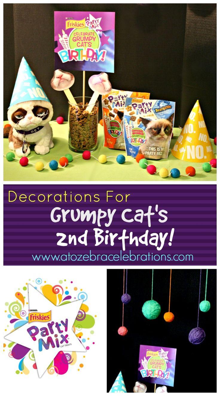 Best 25 grumpy cat birthday ideas on pinterest grumpy for 2nd birthday decoration ideas