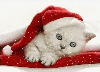 Christmas images – Weihnachtsbilder