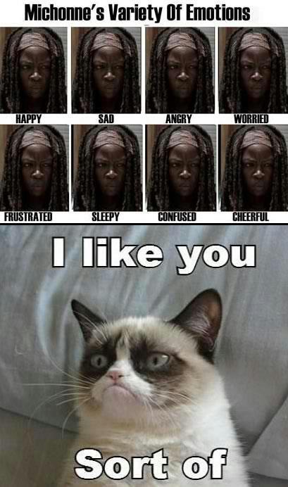 Grumpy cat likes Michonne
