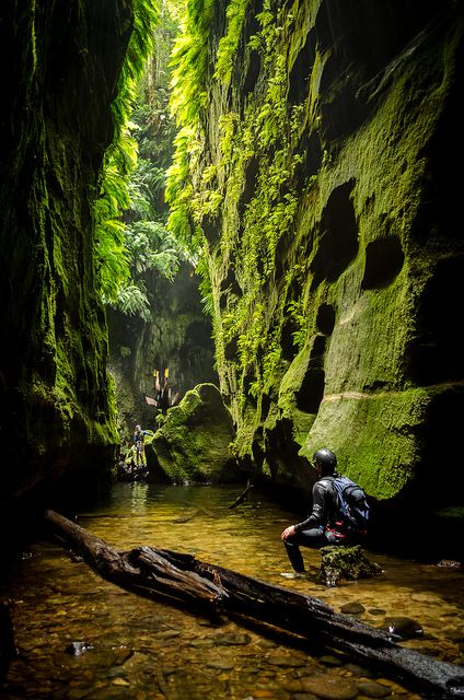 In another world, Claustral Canyon in the Blue Mountains / Australia (by VernsPics).