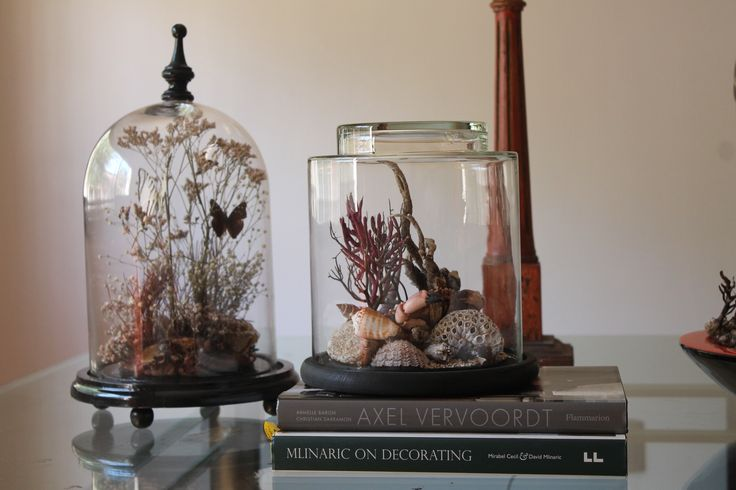 fanal marino y otro con mariposas, diseño Cristian Pizarro