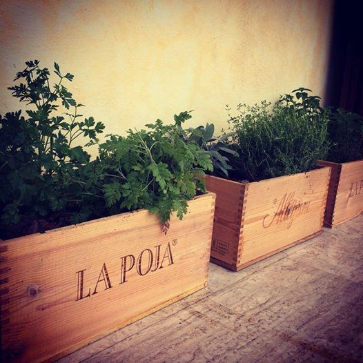 A garden use for our La Poja wood cases.