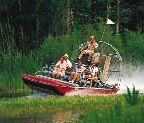 What Is The Best Tour To Take At Everglades