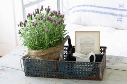vintage industrial caddy - great in kitchen / bath / office: Eclectic Home, Idea, Metals Baskets, You, Farmhouse Style, French Country Design, French Larkspur, Home Offices,  Flowerpot