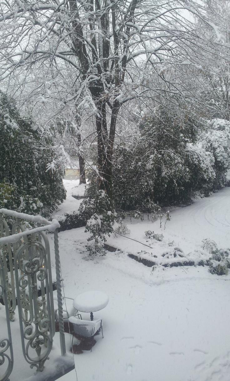 Our garden under the snow!  www.locandalelisa.it