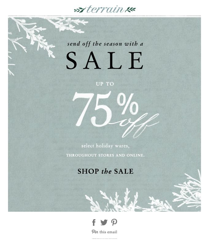 evergreen, winter sale