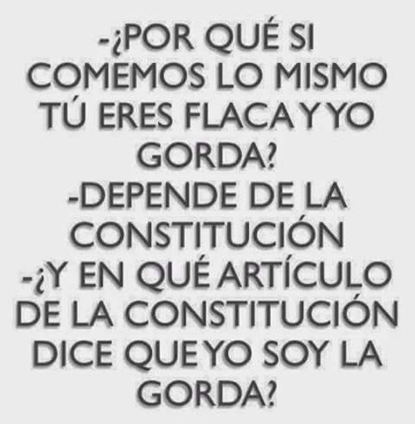 Gorda dependiendo de la constitución. #humor #risa #graciosas #chistosas #divertidas