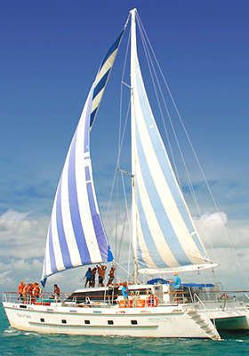 Whitsundays Sail & Stay Package from $239 with All Meals, Snorkeling Gear, Guided Tours & Trips and More.