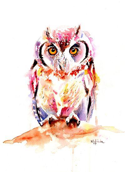 'Little Owl' by Isabel Salvador                                                                                                                                                                                 More