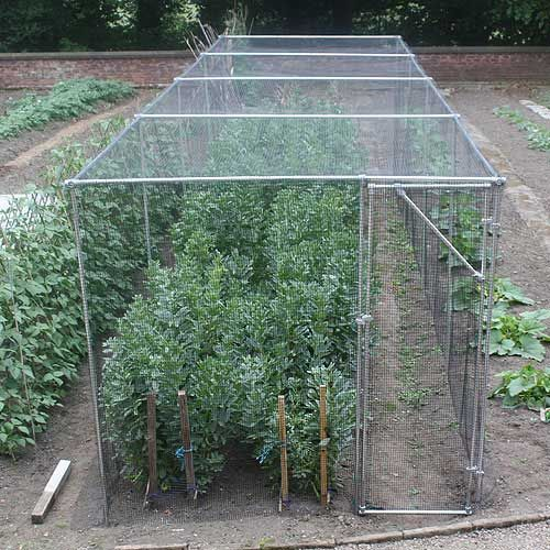 Heavy duty 7' high fruit cage