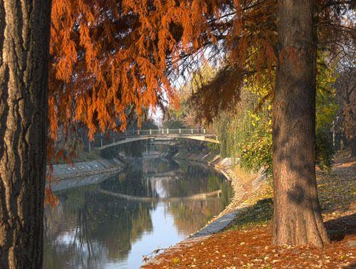 Herbst - Begakanal, Brücke zwischen den Parks, Temeswar