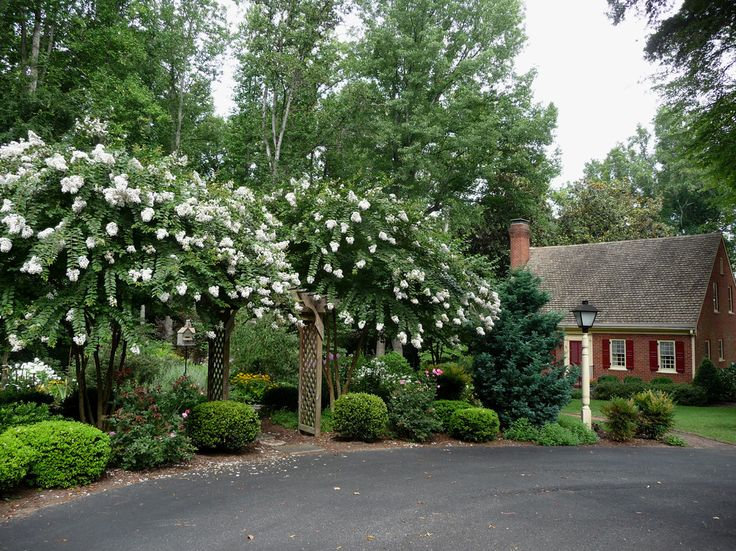 38 best images about hill landscaping on pinterest