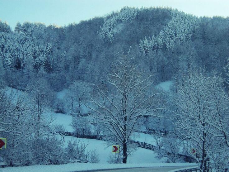 Romania, Vrancea, Birsesti