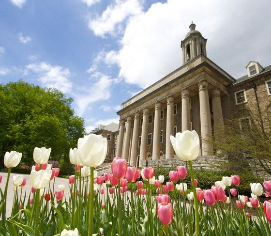 Penn State Ranked No. 46 Globally, No. 29 Nationally