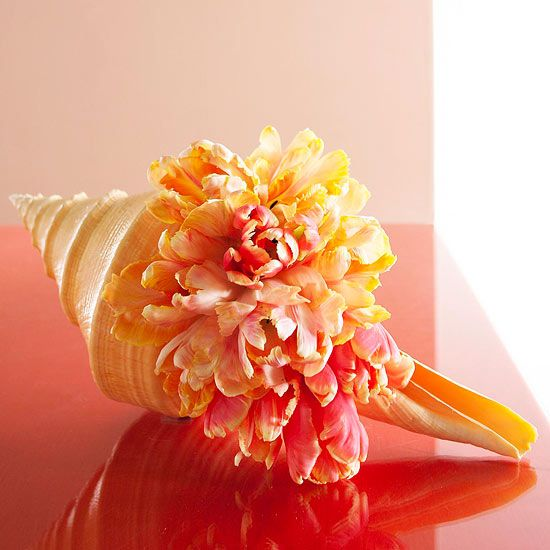 "OMG I Love this idea!! Imagine this for the bouquets for a beach wedding! In the words of R.Zoe ""I die""! Seashell Vase"