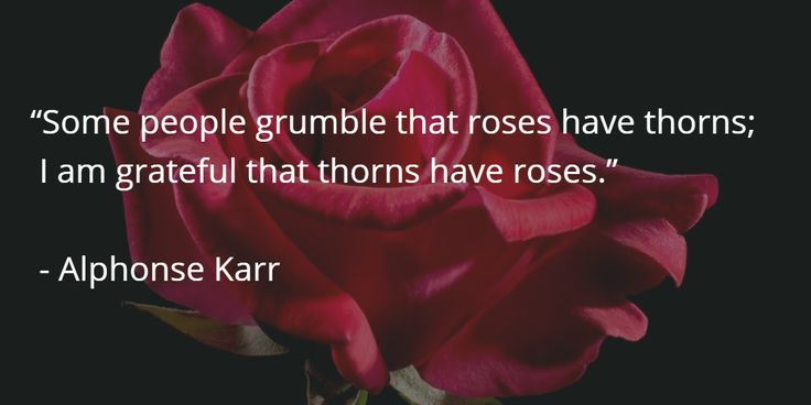 A pinch of wisdom from Alphonse Karr.