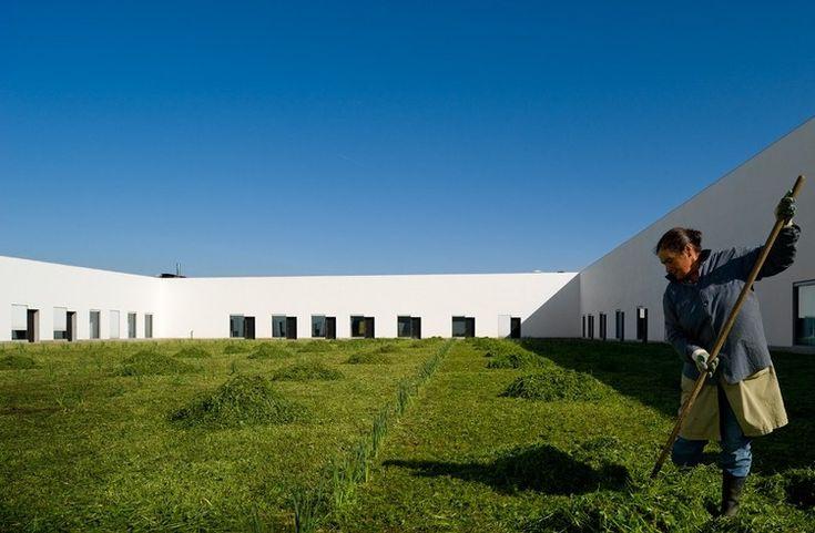 Music School  / Joao Luis Carrilho da Graca © Fernando Guerra