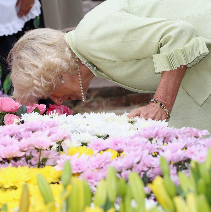 La Duchesse Camilla de Cornouailles a visité avec la Première Dame de Colombie la Quinta de Bolivar Garden à Bogota.