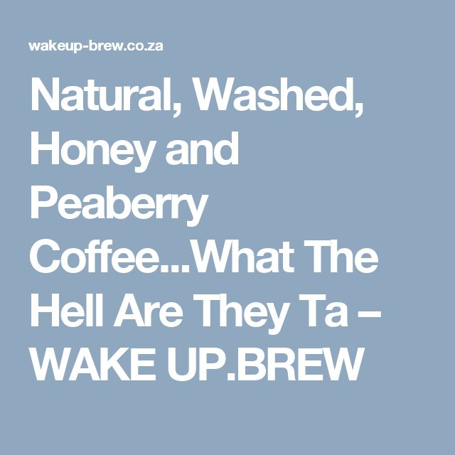Natural, Washed, Honey and Peaberry Coffee...What The Hell Are They Ta                      – WAKE UP.BREW