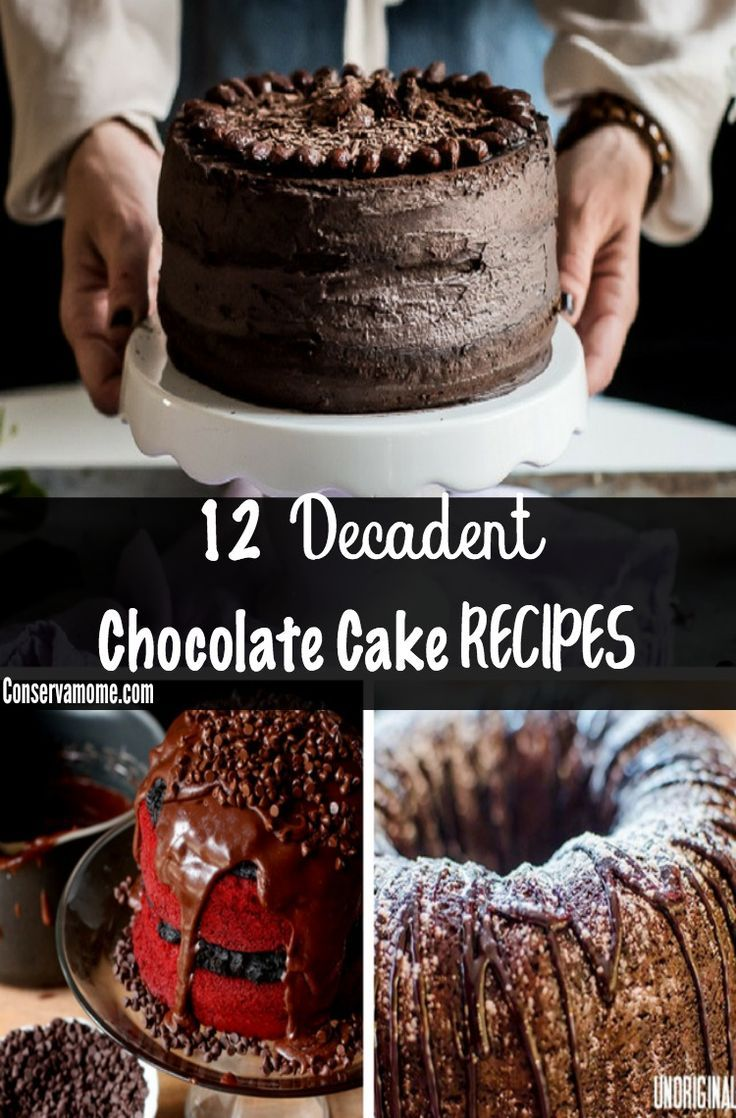 Looking for a delicious Chocolate Cake recipe? Here's a round up of 12 Decadent Chocolate Cake Recipes that will make your mouth water!