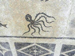 Octopos, Isthmia, /Greece