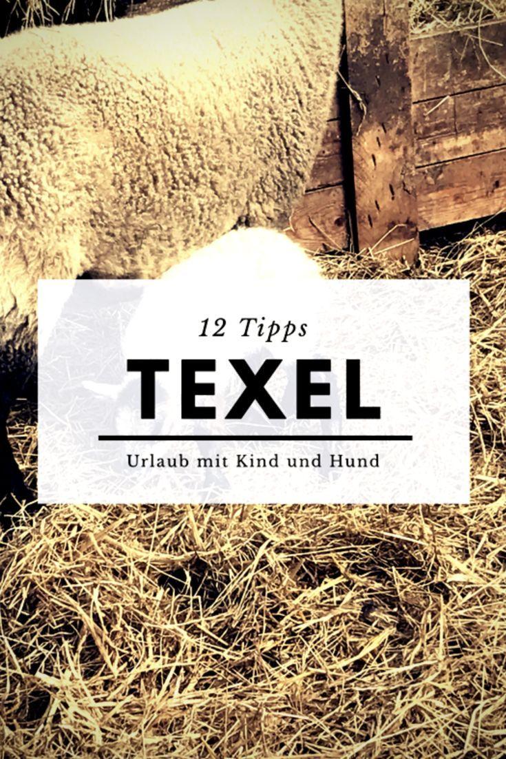 12 Tipps für Urlaub der holländischen Ferieninsel Texel. Unternehmungen fär einen erlebnisreichen Urlaub mit Kund und Hund. Ecomare, Eisbauernhof und viele weitere Tipps!  #reiseblog