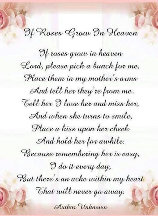 pink roses for my mom in heaven - Google Search