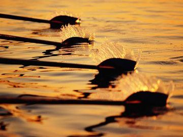 Rowing @Hannah Mestel Labas