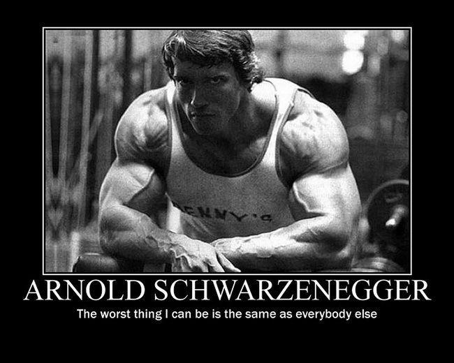 "29 Arnold Schwarzenegger - Bodybuilder Mr Olympia Universe 18""x14"" Poster"