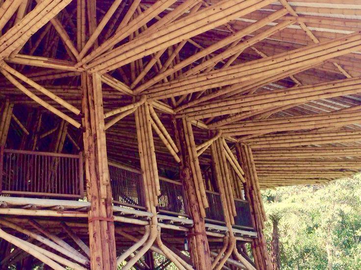 Construcción en Guadua (Bambú)!